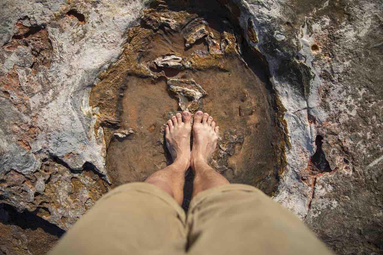 Dinosaur Footprints Gantheaume Point