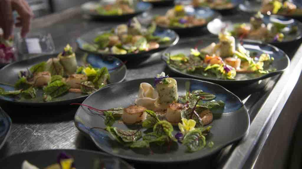 True North dining plates